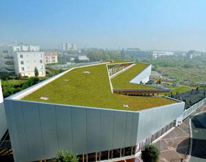 toitures v g talis es murs v g taux v g talisation urbaine le prieur vegetal i d. Black Bedroom Furniture Sets. Home Design Ideas