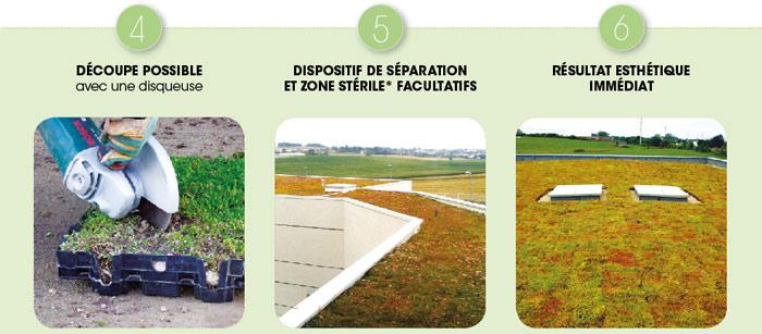 Dispositif de séparation toiture végétalisée