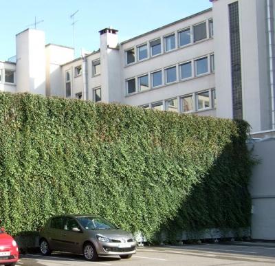 qu 39 est ce qu 39 un mur v g tal le prieur vegetal i d. Black Bedroom Furniture Sets. Home Design Ideas